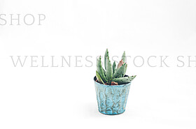 Stock Photography by Wellness Stock Shop http://wellnessstocksho