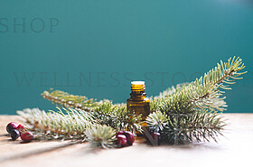 Sweet Holiday Essential Oils